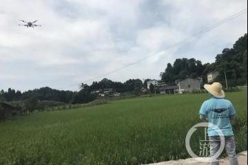 22岁植保飞手:每天田野奔跑,驾驶无人机保护农民的梦